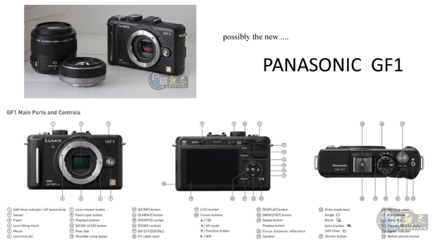 PANASONIC GF1 ...BUT IS IT REAL ?